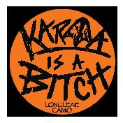 Karma-Is-A-Bitch